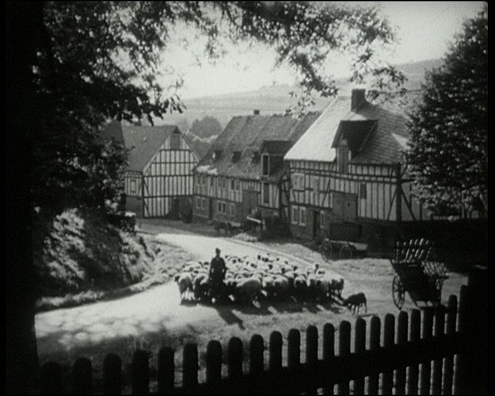 filmbild6
