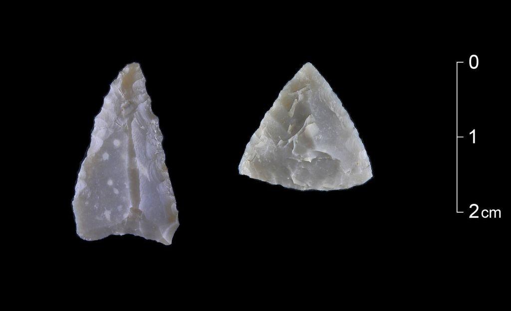 steinzeitnetph2